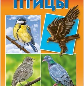 Птицы России - дидактическое пособие, 1+